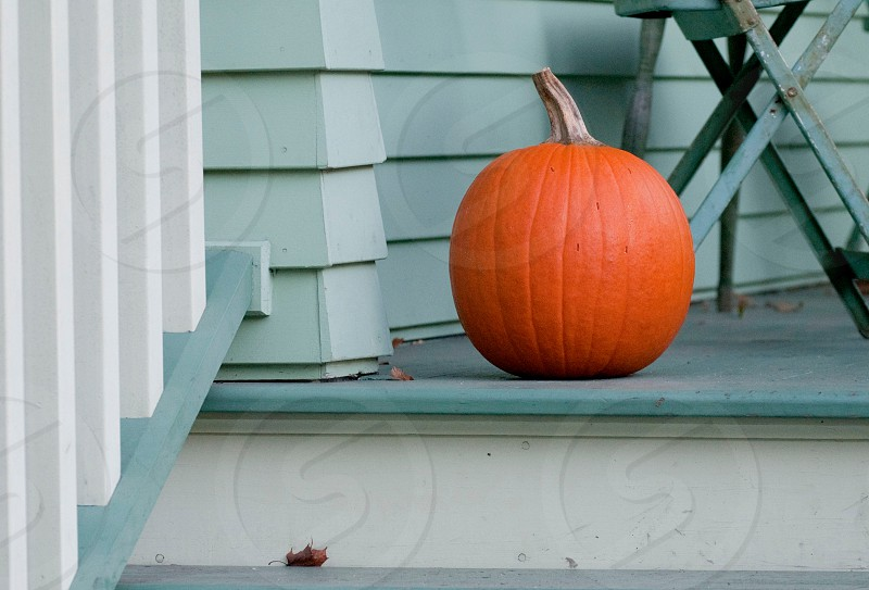 orange pumpkin on top of the stairs photo