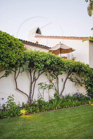 spanish estate grass lawn garden photo