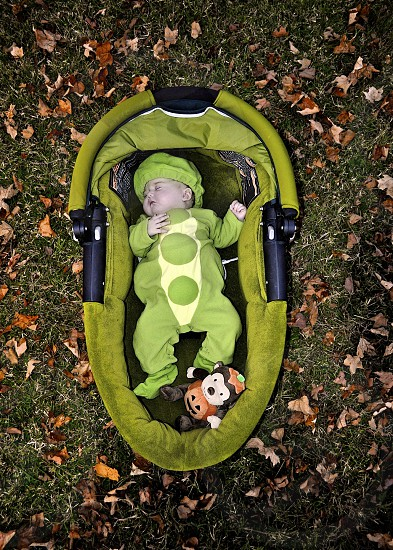 baby girl in halloween costume with leaves photo