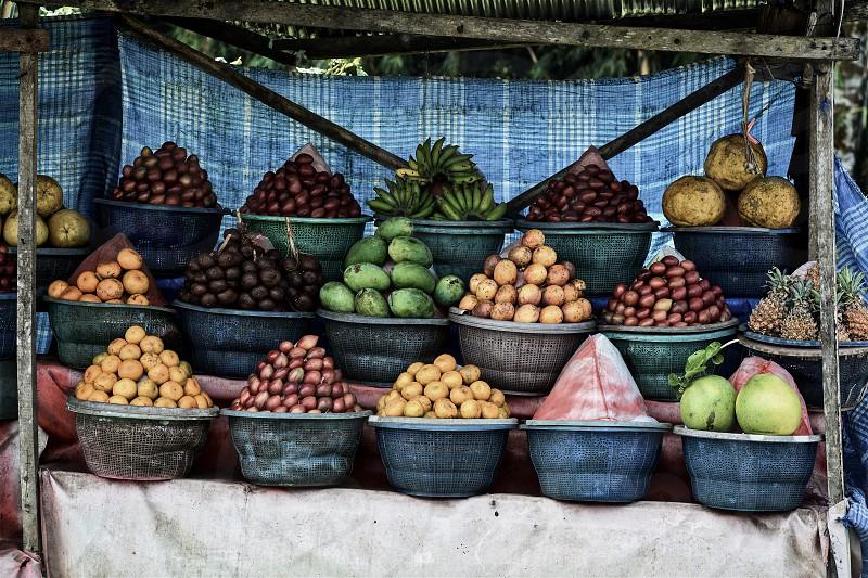Circle of Fruits... photo