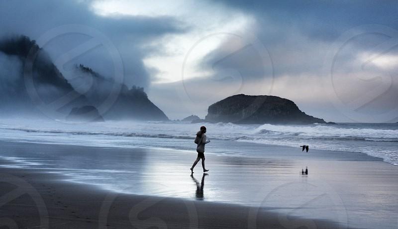 Chasing Shore Birds. Oregon. photo