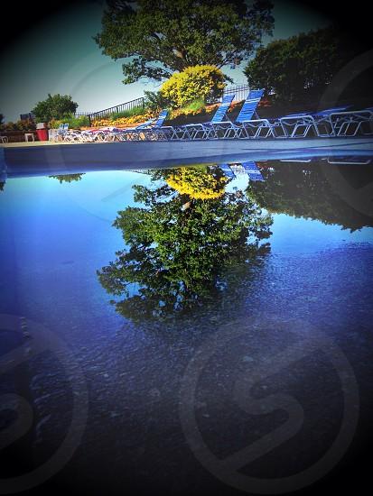 Rain Pool Reflection Nature  photo
