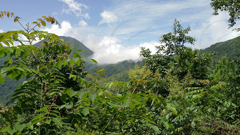 Clouds covering the green hills of Shivapuri National Park photo