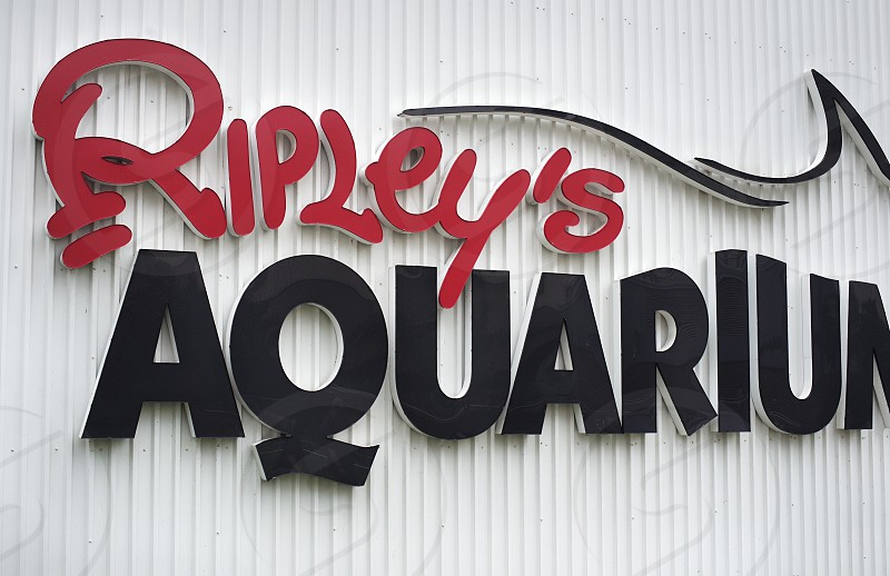 Ripley's Aquarium in downtown Toronto. photo