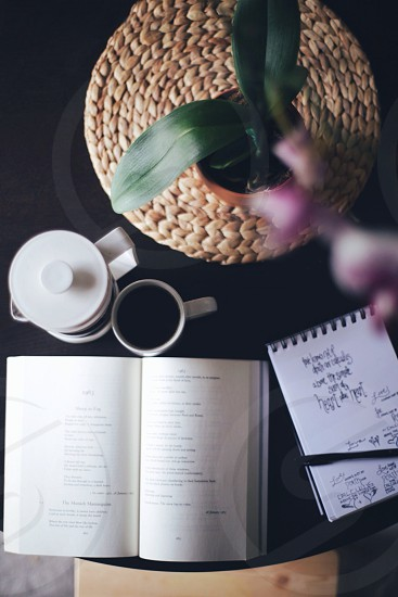 notebook mug and potted plant on table top photo