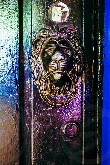 Door with a lion head handle. photo