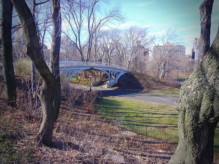Central Park New York photo