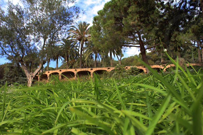 Park Güell photo