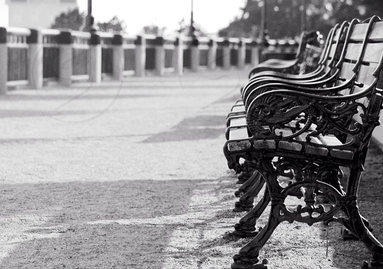 empty park benches at the beach photo