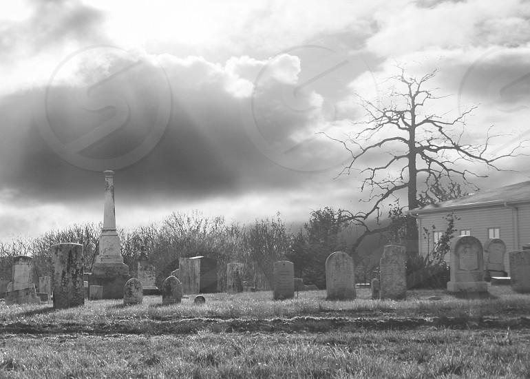 Cemetery Black and White Sunbeams Bare Tree Halloween Macabre Eternity Church photo