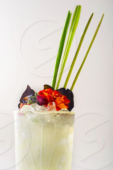summer refreshment food and drink beverage cocktail summer drink lemonade with lemongrass green sticks ice cubes and eatable flowers decorated translucent white background photo