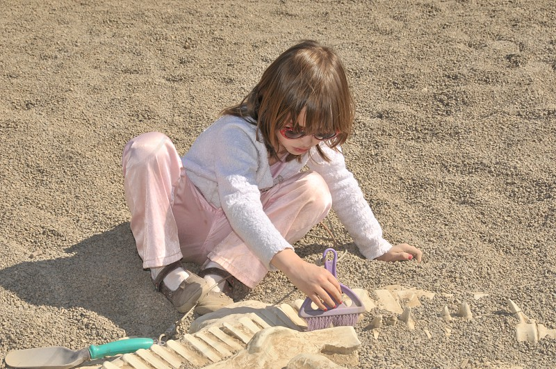 Girl Digging for dinosaur fossils in the excavation pit photo
