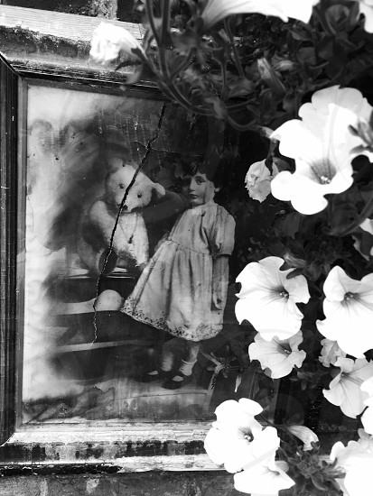 grayscale photo of petunia flowers beside girl and bear plush toy painting photo