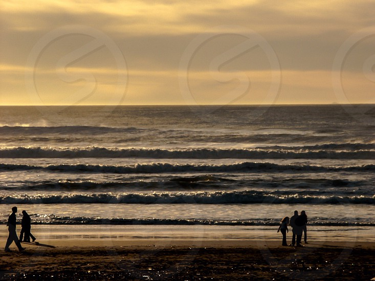 people on seashore during sunset photo