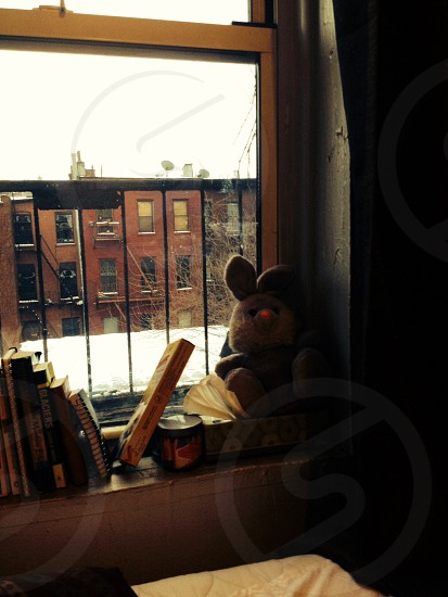 Brooklyn Williamsburg books winter cozy comfort home photo