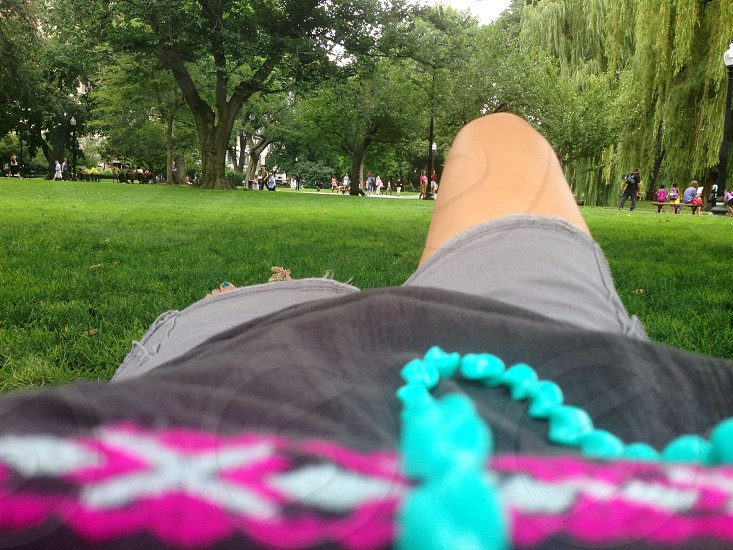 Boston park nap grass weeping willow turquoise necklace summer sunshine shady tree people watching photo