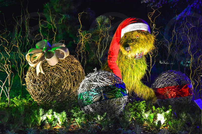 Christmas decorations made out of plants and woven sticks. photo