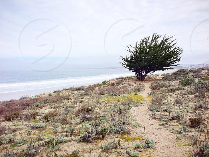 Monterey State Beach in Monterey California.  photo