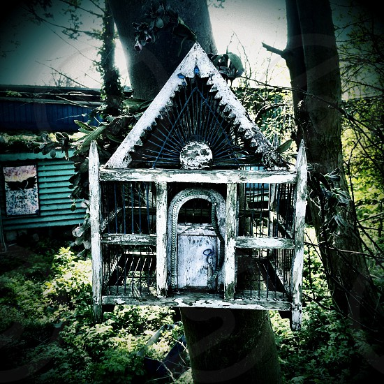 Birdhouse in Denmark Christiania photo