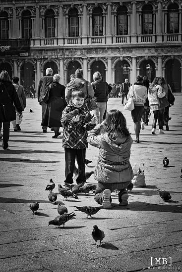 Piazza San Marco VeniceItaly  photo