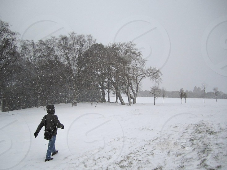 person in grey hood jacket and blue jeans walking on snow field near tall trees photo
