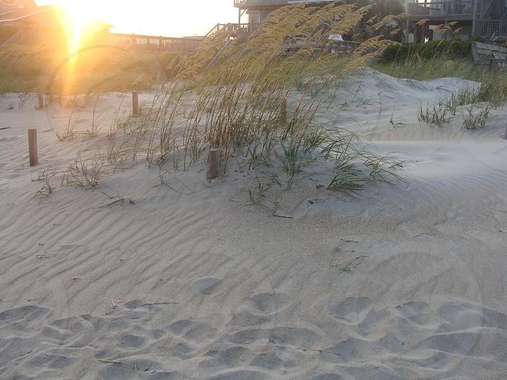 beach North Carolina photo