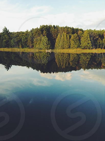 lake and forest photo