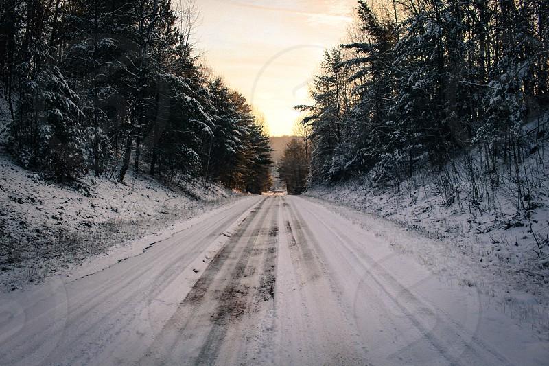 winter sunrise pines ice hill yellow green photo
