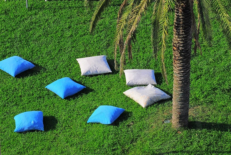 blue throw pillow at ground photo