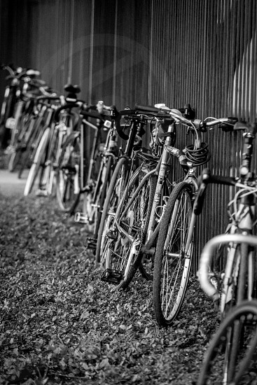 light pattern repetition repeat design tires wheels bikes bicycles rims fence photo