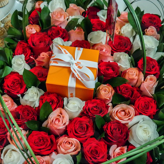 Red White and Pink Roses with Orange Gift Box photo
