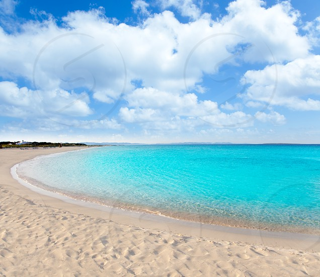 beach llevant formentera called playa tanga photo