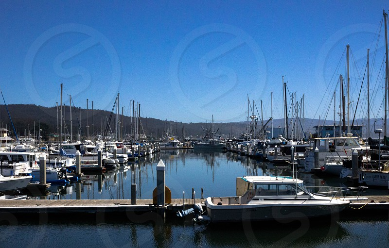sailboats boats pier water parked California Hal Moon Bay almost symmetric.  photo