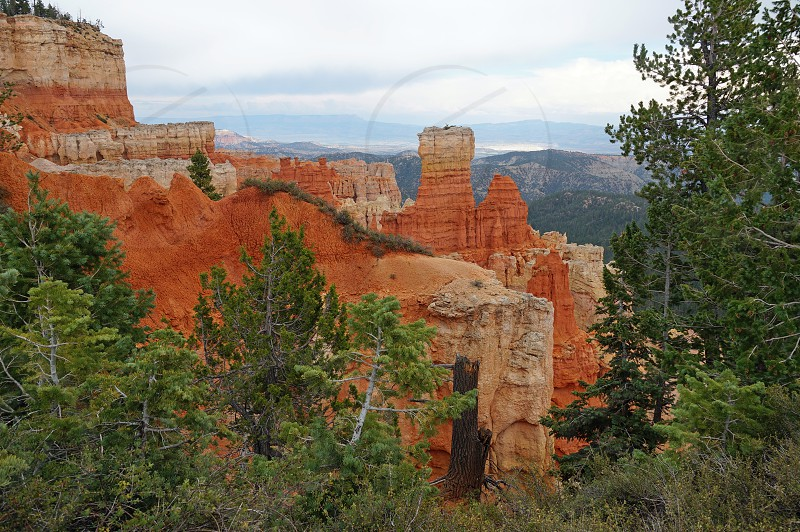 Bryce Canyon in Garfield County Utah photo