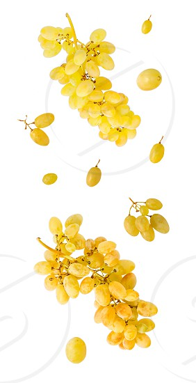 Flying white grape berries isolated on white background with clipping path as package design element and advertising. full depth of field. Professional studio photo. photo