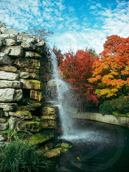 Waterfall at National Zoo Washington DC Fall photo