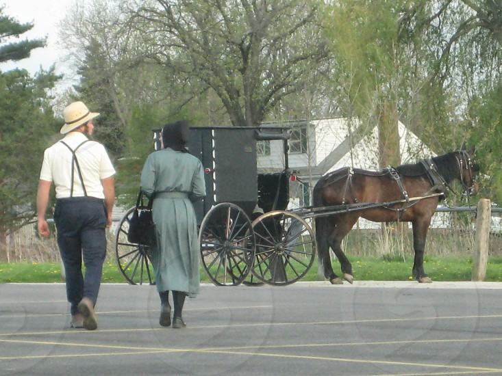horse-drawn black cart photo