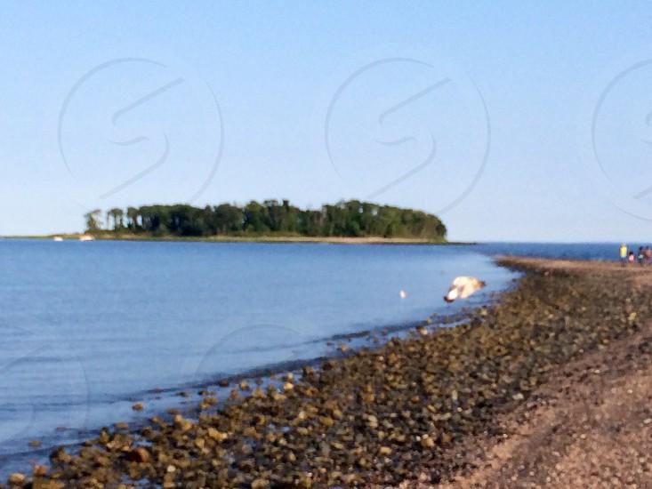 rocky coast look at lush green island photo