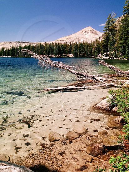 Lake sierras  photo