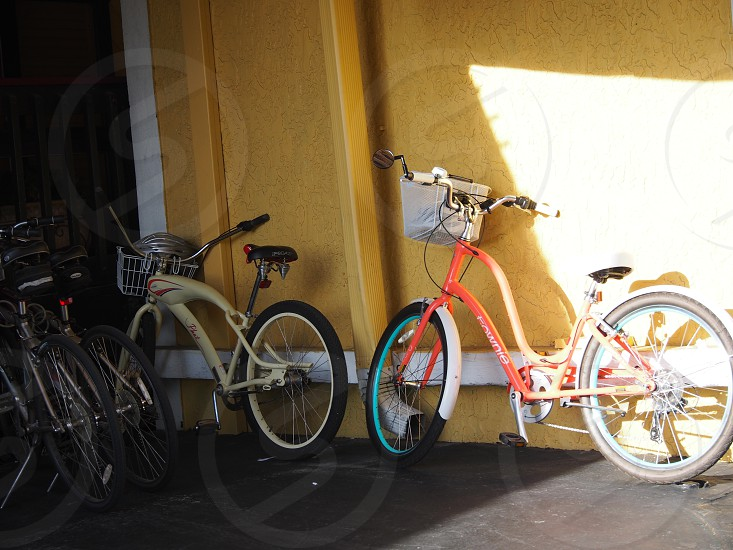 SAVE THE PLANET-ONE BIKE AT A TIME photo