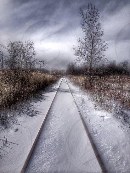 white snow photo