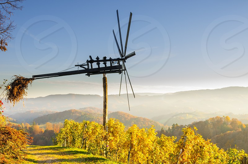 Traditional slovene scarecrow erected in vineyards in autumn photo