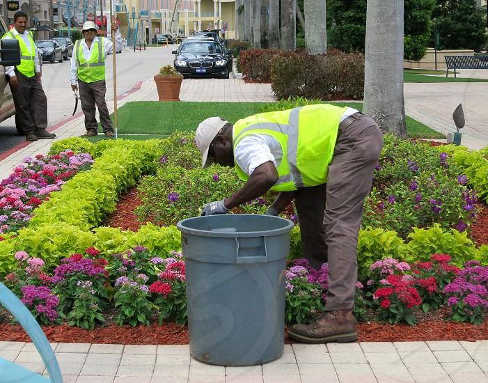 Landscape workers flower garden photo