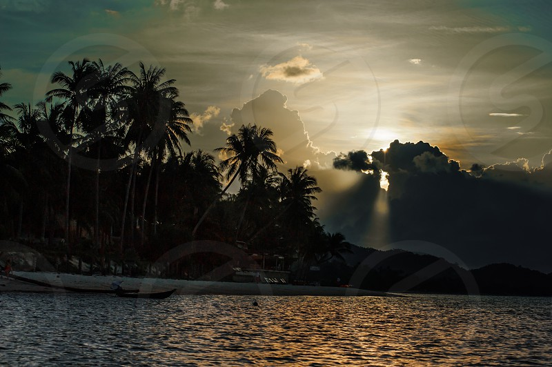Sunset in tropics. Silhouette of palm trees ray of light sea water surface photo