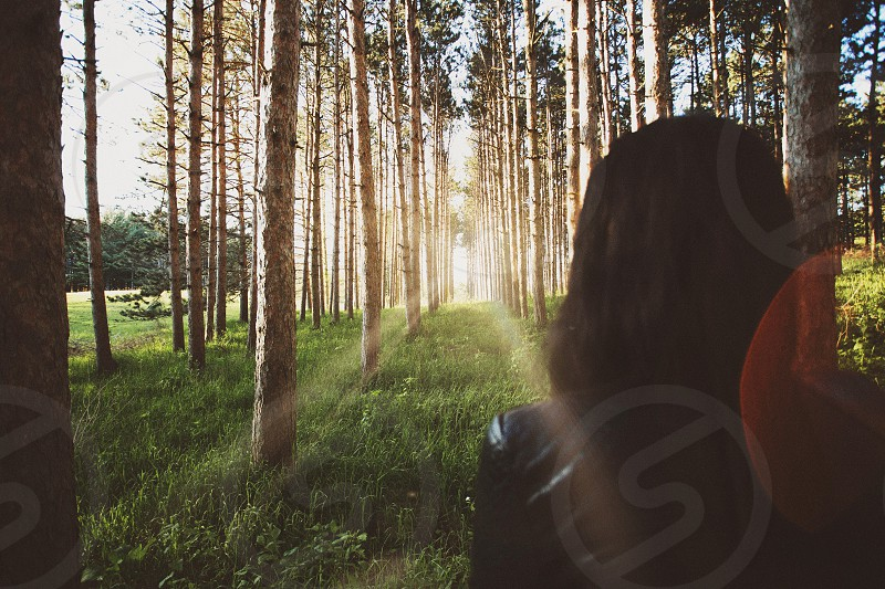 woman walking in forest during daytime photo
