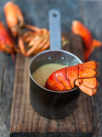 Lobster soup photo