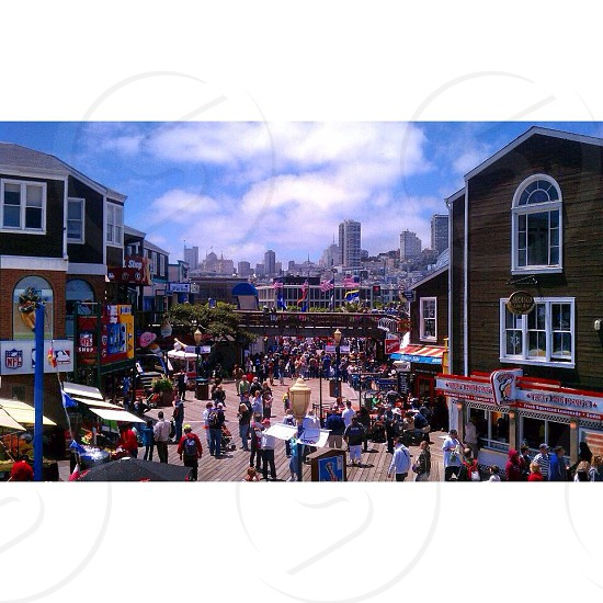 San Francisco California pier 39 photo