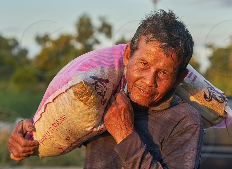 A Thai rice farmer carrying a bag of rice in early morning sunlight. photo