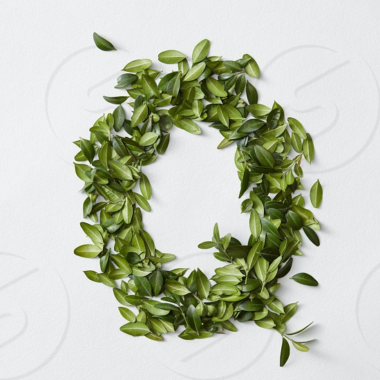English alphabet concept. Alphabet isolated on white background. Abc letters from green leaves. Letter Q represented with green leaves. Symbol Q on white. photo