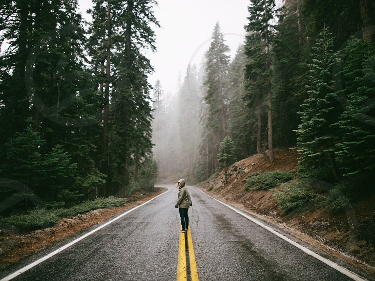 person in gray jacket walking on asphalt road in the middle of trees during daytime photo